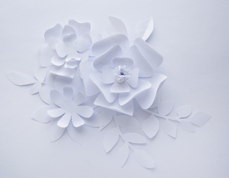 Paper flower on white background paper craft flowers paper stock 74415868 paper flower on white background paper craft flowers paper cut beautiful design mightylinksfo