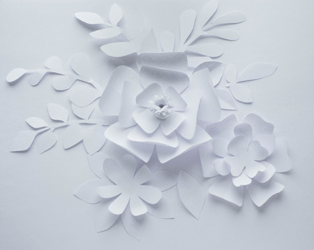 paper flower on white background, paper craft flowers, paper cut, beautiful design
