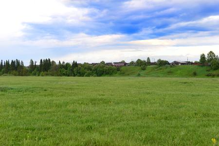 dia soleado: Beautiful summer village landscape, green field
