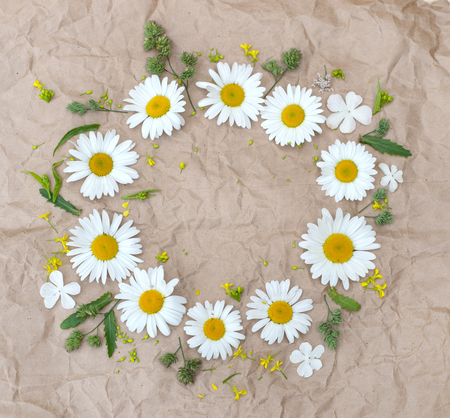 chamomile flowers, beautifu fieldl flowers over brown paper background Stok Fotoğraf