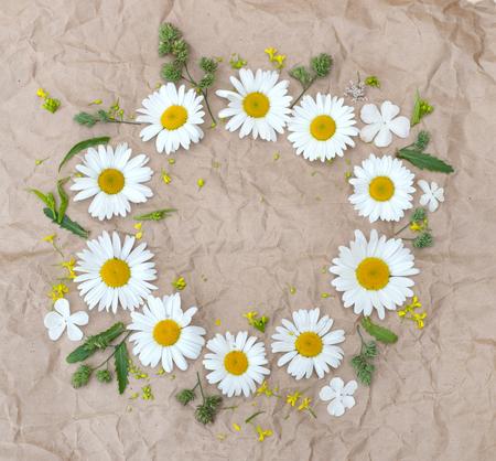 chamomilla: chamomile flowers, beautifu fieldl flowers over brown paper background Stock Photo