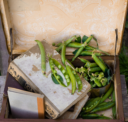green peas on rustic wooden background in vintage suitcase with old books