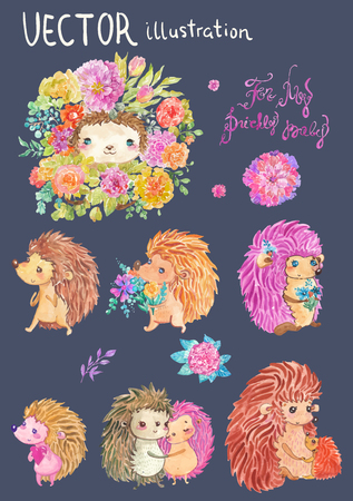 Watercolor hedgehog illustration, cute collection over white