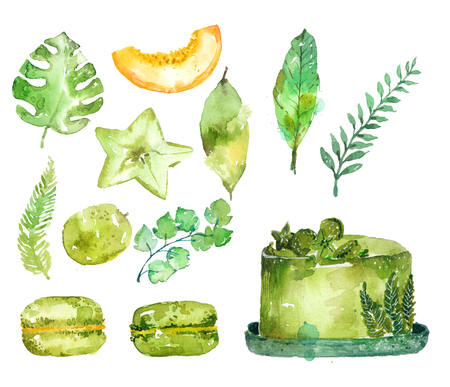 Watercolor green cake with exotic plants and fruits, beautiful food background