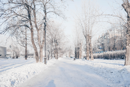Winter park, snow-covered landscape outside Stock Photo - 118853080