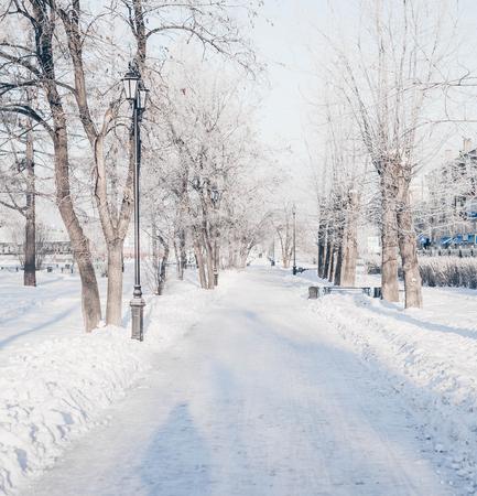 Winter park, snow-covered landscape outside Banco de Imagens