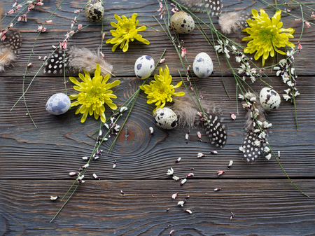 Easter background, quail eggs and yellow chrysanthemum over wooden background for beautiful holiday design of cards