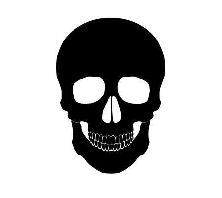 Silhouette Illustration of a human skull.  イラスト・ベクター素材