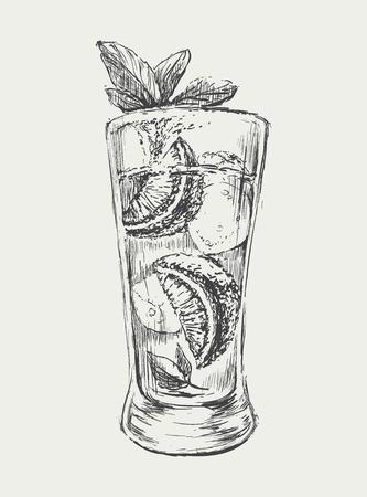 coquetel: Esboço Mojito Cocktail Vector ilustração desenhada mão