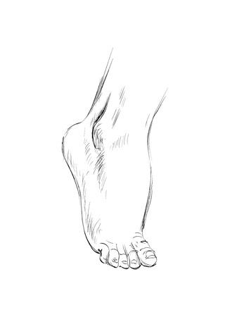Hand drawn sketch feet vector illustration.