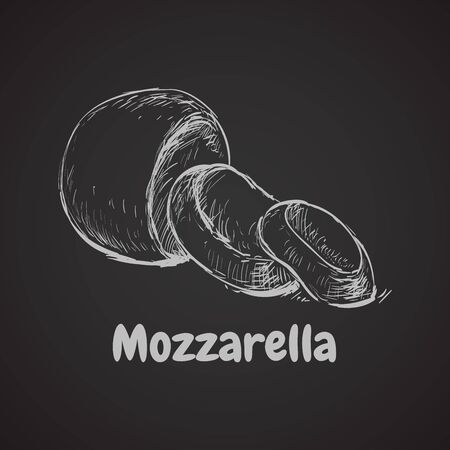 Mozzarella Hand Drawn Vector Illustration. Mozzarella Hand Drawn Vector Illustration. 矢量图像