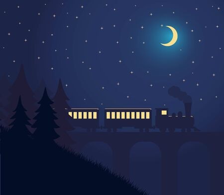 Night Landscape With a Train Traveling Over a Bridge, Mountains and Forest and Starry Sky