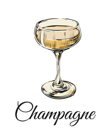 Champagne Glass Hand Drawing Vector Illustration Bubbles. Alcoholic Drink. 矢量图像