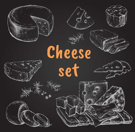 Cheese Set Hand Drawing Vector Illustration. Isolated curds collection recipe book, advertising cheese