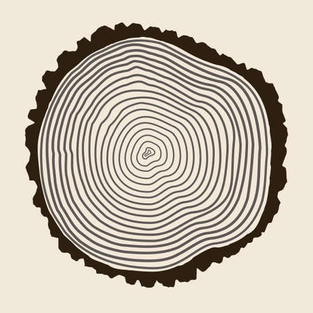 Tree Rings Background Vector Illustration