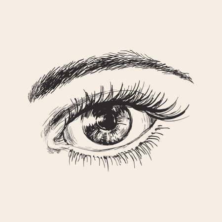 Beautiful Female Eye Hand Drawn Sketch Vector illustration.