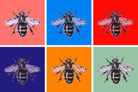 Bee Modern Art Hand Drawn Sketch Vector illustration. Pop art. Honey bumble bee bumblebee. Иллюстрация