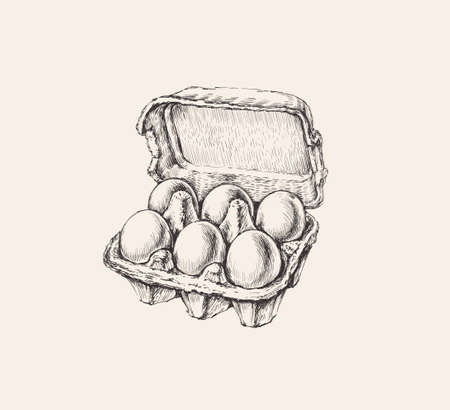Eggs Packing Hand Drawn Illustration Isolated. Ink Drawing. Farm. Poultry farming Иллюстрация