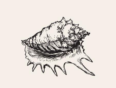 Seashell Sink Hand Drawn Vector Illustration Иллюстрация
