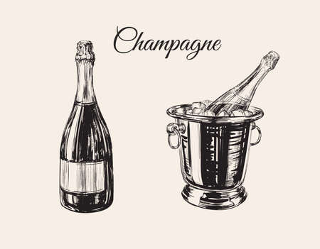 Champagne Bottle Bucket Hand Drawing Vector Illustration Bubbles. Alcoholic Drink.