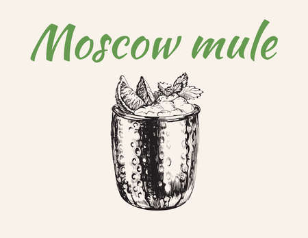 Moscow Mule Cocktail Hand Drawn Drink Vector Illustration