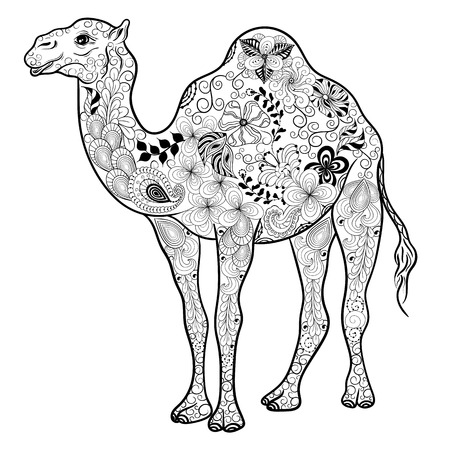 painted image: Illustration Camel was created in doodling style in black and white colors. Painted image is isolated on white background.