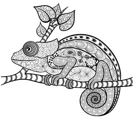 painted image: Illustration Chameleon was created in doodling style in black and white colors.  Painted image is isolated on white background. It  can be used for coloring books for adult. Illustration