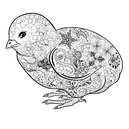 poult: Illustration Chick was created in doodling style in black and white colors.  Painted image is isolated on white background.