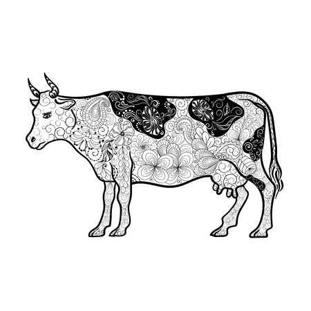 painted image: Illustration Cow was created in doodling style in black and white colors.  Painted image is isolated on white background. Illustration