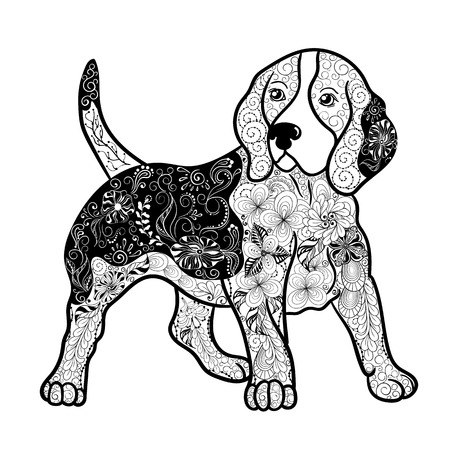 painted image: Illustration Beagle dog was created in doodling style in black and white colors.  Painted image is isolated on white background.  It  can be used for coloring books for adult. Illustration