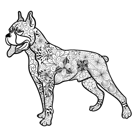"""Illustration """"Boxer dog"""" was created in doodling style in black and white colors. Painted image is isolated on white background. It can be used for coloring books for adult."""
