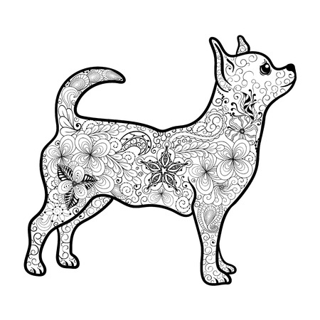 painted image: Illustration Chihuahua was created in doodling style in black and white colors.  Painted image is isolated on white background.  It  can be used for coloring books for adult. Illustration