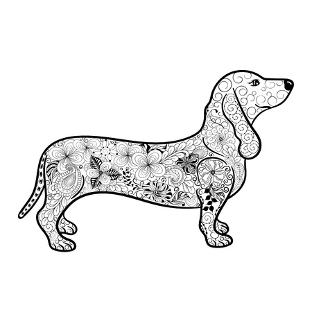 painted image: Illustration Dachshund was created in doodling style in black and white colors.  Painted image is isolated on white background.  It  can be used for coloring books for adult. Illustration