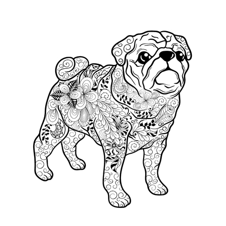 painted image: Illustration Pug dog was created in doodling style in black and white colors.  Painted image is isolated on white background.  It  can be used for coloring books for adult. Illustration