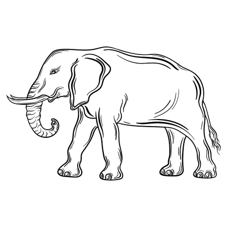 painted image: Illustration Elephant was created in black and white colors.  Painted image is isolated on white background.