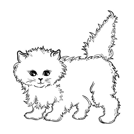painted image: Illustration Kitten was created in black and white colors.  Painted image is isolated on white background. Illustration