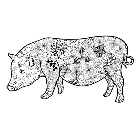 painted image: Illustration Pig was created in doodling style in black and white colors.  Painted image is isolated on white background.  It  can be used for coloring books for adult.