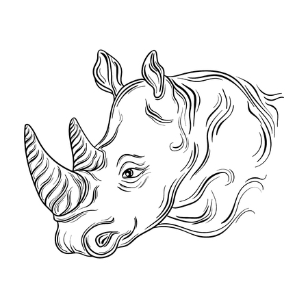 painted image: Illustration Rhinoceros head was created in black and white colors. Painted image is isolated on white background. Illustration