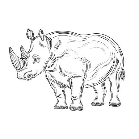 """Illustration """"Rhinoceros"""" wurde in schwarzen und weißen Farben. Gemaltes Bild ist isoliert auf weißem Hintergrund. Standard-Bild - 58944613"""