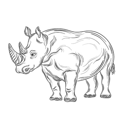 painted image: Illustration Rhinoceros was created in black and white colors. Painted image is isolated on white background. Illustration