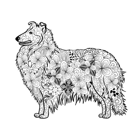 Illustration Collie Dog was created in doodling style in black and white colors.  Painted image is isolated on white background.  It  can be used for coloring books for adult. Illustration