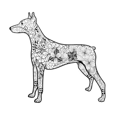 """Illustration """"Dobermann-Hund"""" wurde in kritzeln Stil in Schwarz-Weiß-Farben. Gemaltes Bild ist isoliert auf weißem Hintergrund. Es kann für die Färbung Bücher für Erwachsene verwendet werden. Standard-Bild - 60001340"""