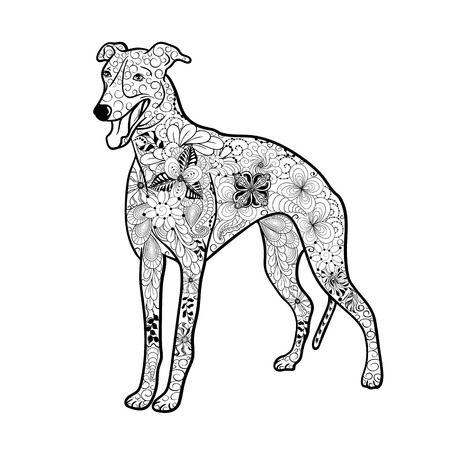 painted image: Illustration Greyhound Dog was created in doodling style in black and white colors.  Painted image is isolated on white background.  It  can be used for coloring books for adult.