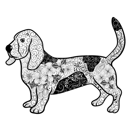 hound dog: Illustration Hound Dog was created in doodling style in black and white colors.  Painted image is isolated on white background.  It  can be used for coloring books for adult. Illustration