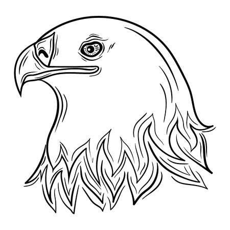 painted image: Illustration Eagle head was created in black and white colors.  Painted image is isolated on white background. It  can be used for coloring books for adult.