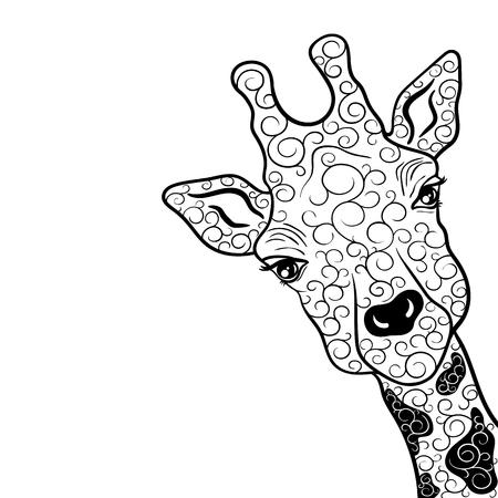 """Illustration """"Giraffe"""" wurde in kritzeln Stil in Schwarz-Weiß-Farben. Gemaltes Bild ist isoliert auf weißem Hintergrund. Es kann für die Färbung Bücher für Erwachsene verwendet werden. Standard-Bild - 68631881"""