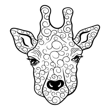 """Illustration """"Giraffe Kopf"""" wurde in kritzeln Stil in Schwarz-Weiß-Farben. Gemaltes Bild ist isoliert auf weißem Hintergrund. Es kann für die Färbung Bücher für Erwachsene verwendet werden. Standard-Bild - 68631883"""