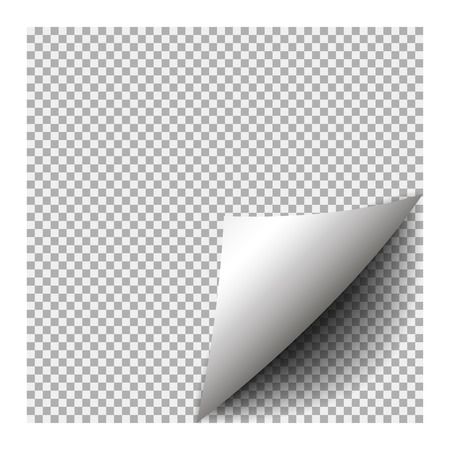 Page curl with shadow on blank sheet of paper. Element for advertising and promotional message isolated on transparent background. Illustration