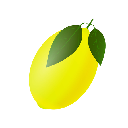 Fresh and juicy lemon with green leaf on white background. Vector illustration Standard-Bild - 120441379