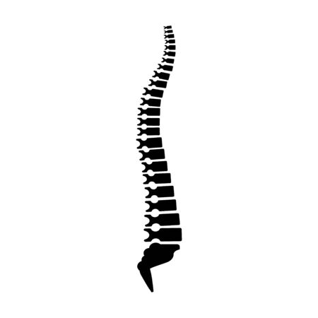 Backbone icon, human spine template. Vector illustration